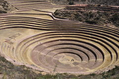 Circular terraces of Moray, Peru Stock Photo