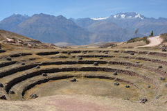 Circular terraces of Moray, Peru Royalty Free Stock Photography