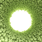 Circular tunnel of green apples Royalty Free Stock Image