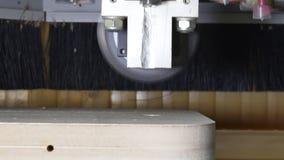 A circular viu no CNC da madeira da máquina de trituração filme