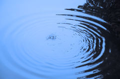 Circular water waves on a lake Royalty Free Stock Photography
