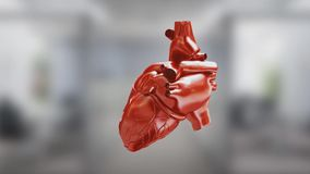 Circulatory system. Heart. Animated 3D. Human anatomy. 3D human anatomy animation vector illustration