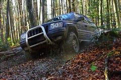 Circulez en voiture l'emballage dans la course tous terrains de forêt d'automne sur le fond de nature de chute Le véhicule utilit images libres de droits