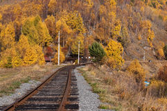 The Circum-Baikal Railway Royalty Free Stock Images