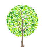 Circunda a árvore Imagem de Stock