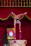 circus Fotografie Stock