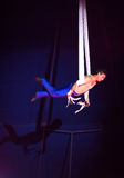 Circus acrobat Royalty Free Stock Images