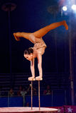 Circus Acrobat 6 Royalty Free Stock Image