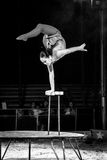 Circus Acrobat 5 Royalty Free Stock Images