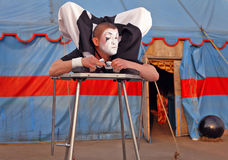 Circus acrobat with a plastic body. Executes his tricks. Photo stock photo