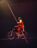 Circus act Royalty Free Stock Photo