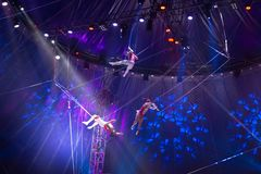 Circus team performance on stage, zirkus