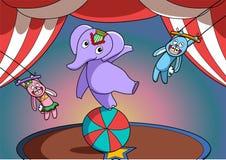 Circus animal show. Circus show with funny animals Stock Photos