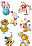 Circus animals. The illustration shows several different animals that perform in the circus. Illustration done in cartoon style, on separate layers Royalty Free Stock Photos