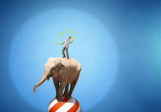 Circus animals performance . Mixed media Royalty Free Stock Photo