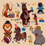 Circus animals set Royalty Free Stock Photos