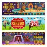 Circus animals show and illusionist performance vector illustration