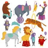 Circus animals vector illustration. Stock Image