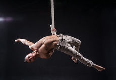 Circus artist on the aerial straps man. Circus artist on the aerial straps with Strong muscles on black background Stock Photos