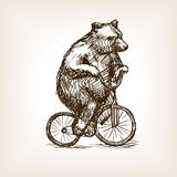 Circus bear on bicycle hand drawn sketch vector Royalty Free Stock Image