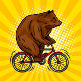 Circus bear on bicycle pop art vector illustration Stock Photography