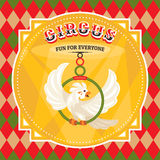 Circus card with a parrot Royalty Free Stock Photo