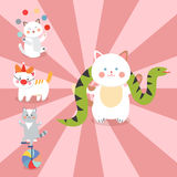 Circus cats vector cheerful illustration for kids with little domestic cartoon animals playing mammal Stock Image