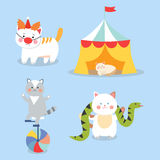 Circus cats vector cheerful illustration for kids with little domestic cartoon animals playing mammal Royalty Free Stock Images