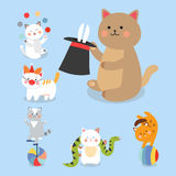 Circus cats vector cheerful illustration for kids with little domestic cartoon animals playing mammal Stock Photos