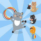 Circus cats vector cheerful illustration for kids with little domestic cartoon animals playing mammal Royalty Free Stock Photos