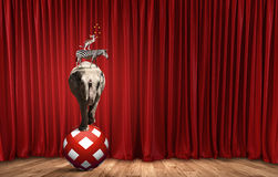 Circus in city Royalty Free Stock Photography