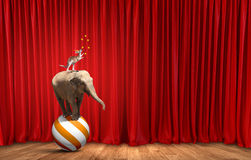 Circus in city Stock Image
