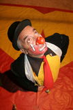 Circus clown Royalty Free Stock Images
