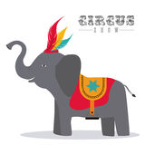 Circus design Royalty Free Stock Photo