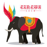 Circus design. Over white background, vector illustration Royalty Free Stock Photos
