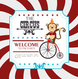 Circus design Stock Image