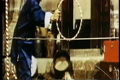 Circus dogs performing stock video footage