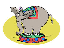 Circus Elephant. A cartoon of a circus elephant standing on a colorful box Royalty Free Stock Photos