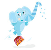 Circus elephant. Funny animal is trained on great circus show. Vector Illustration Royalty Free Stock Images