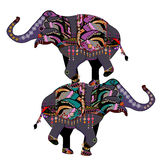 Circus elephants. Elephants in the ethnic style with a white background Stock Photo