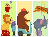 Circus funny animals vector cheerful cards design zoo entertainment magician performer carnival illustration Stock Images