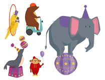 Circus funny animals vector cheerful zoo entertainment magician performer carnival illustration Stock Photo