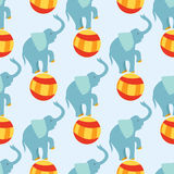 Circus funny performance elephant animal vector seamless pattern cheerful zoo entertainment juggler magician performer Royalty Free Stock Photos