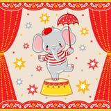 Circus happy birthday card design. Stock Photo