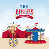 Circus icon design Royalty Free Stock Image