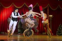 Circus Royalty Free Stock Photos