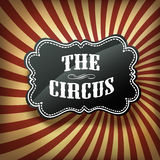 Circus label on retro rays background, vector. Royalty Free Stock Images