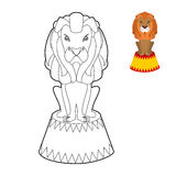 Circus lion coloring book. Big Serious animal in linear style Stock Image