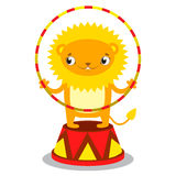 Circus lion on a pedestal with a Hoop in paws. Circus concept. F Royalty Free Stock Photos