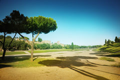 Circus Maximus Royalty Free Stock Images